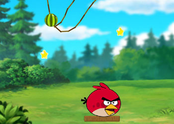 Play Angry Birds - Cut The Rope online - Screenshot 2