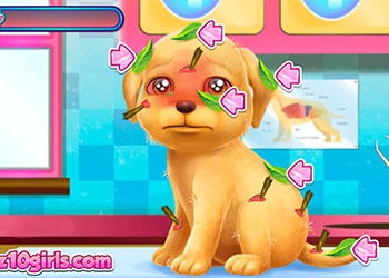 Play Cute Puppy Rescue online - Screenshot 1