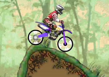 Play Dirt Bike Championship online - Screenshot 2