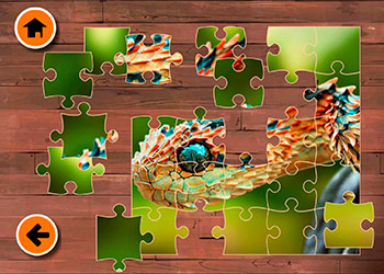Play Exotic Animals Jigsaw online - Screenshot 2