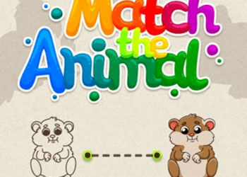 Play Match The Animal online - Screenshot 1